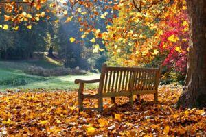 őszi eszközök