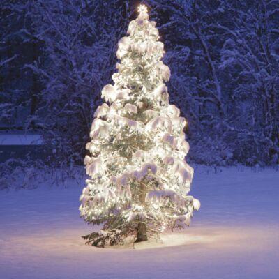 Kültéri toldható fényfüzér, Hideg fehér, 50 LED, 5 méter
