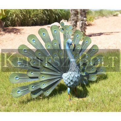 Peacock páva dísz