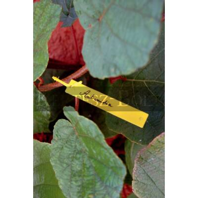 Tree Label függő címke (40db/csomag)
