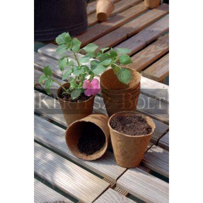 Growing pot tőzegcserép, 8x8 cm (14db/csomag)